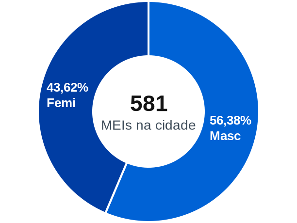 Gênero de MEIs na cidade de Santo Antônio