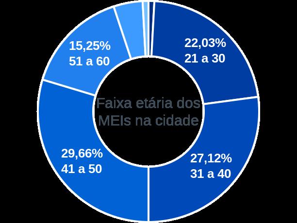 Faixa etária de MEIs na cidade de Senador Elói de Souza