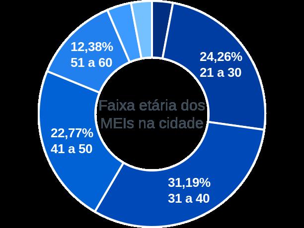 Faixa etária de MEIs na cidade de Serra do Mel