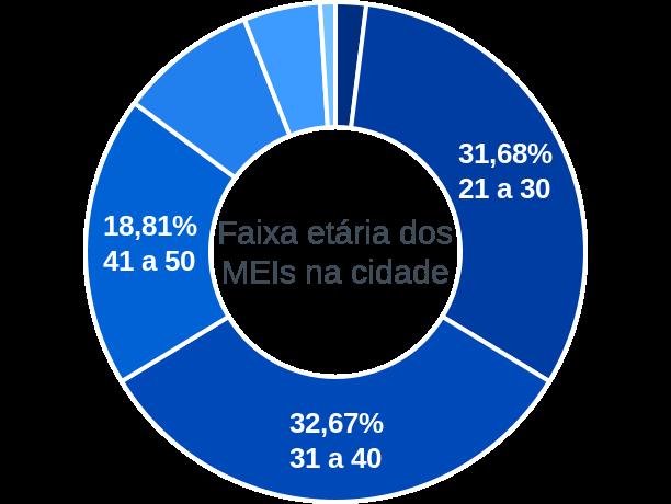 Faixa etária de MEIs na cidade de Vila Flor