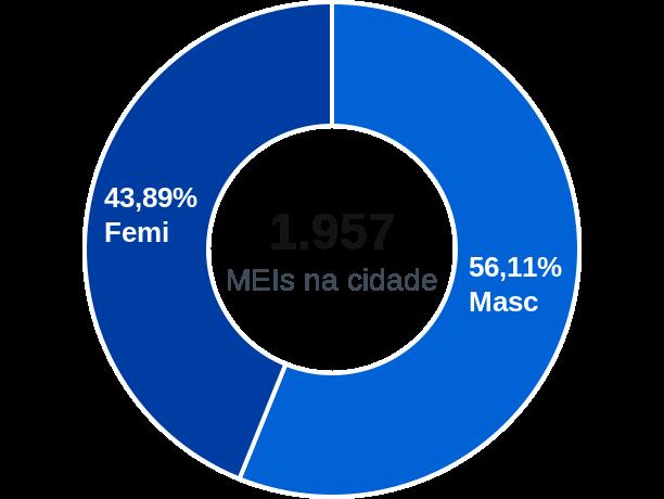 Gênero de MEIs na cidade de Ouro Preto do Oeste
