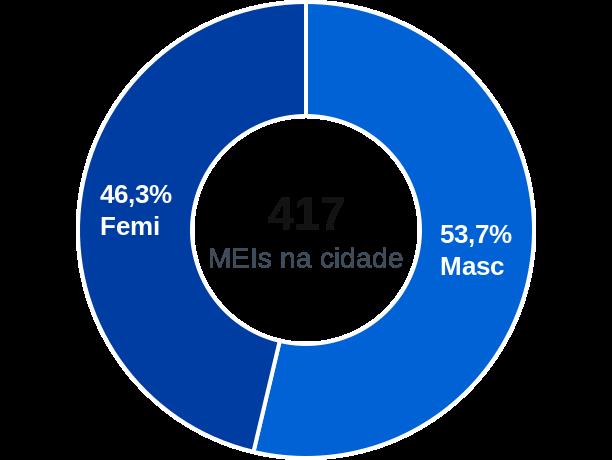 Gênero de MEIs na cidade de Ametista do Sul