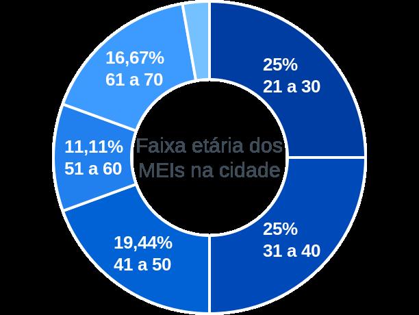 Faixa etária de MEIs na cidade de André da Rocha