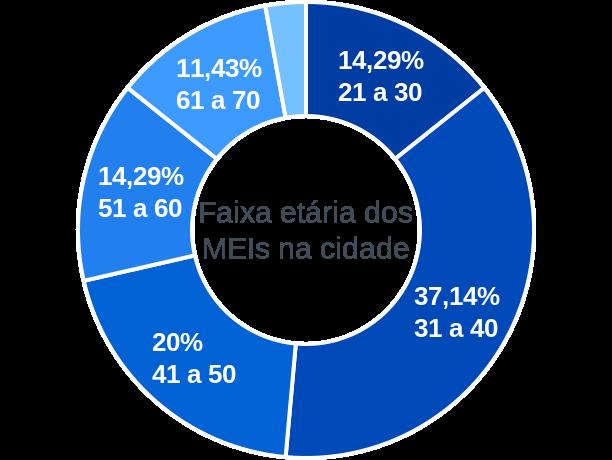 Faixa etária de MEIs na cidade de Carlos Gomes