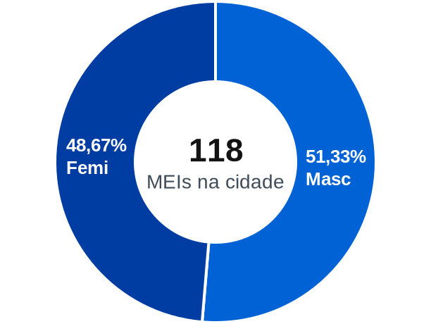 Gênero de MEIs na cidade de Caseiros
