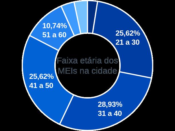 Faixa etária de MEIs na cidade de Caseiros