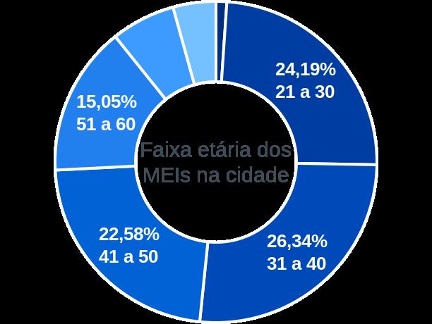 Faixa etária de MEIs na cidade de Dona Francisca
