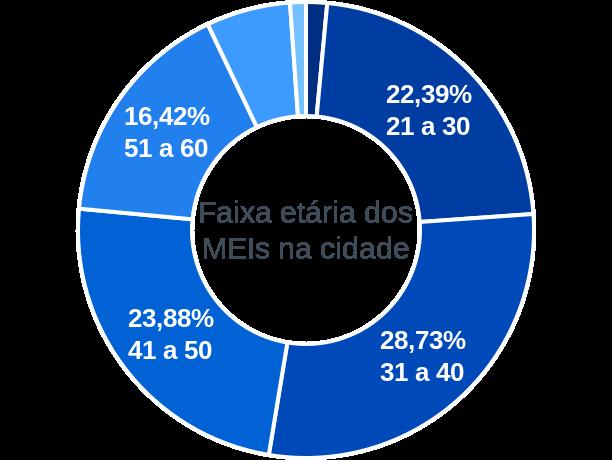 Faixa etária de MEIs na cidade de Fazenda Vilanova