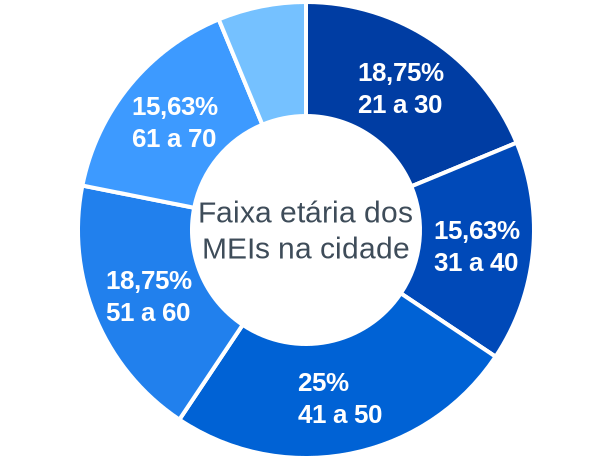Faixa etária de MEIs na cidade de Floriano Peixoto