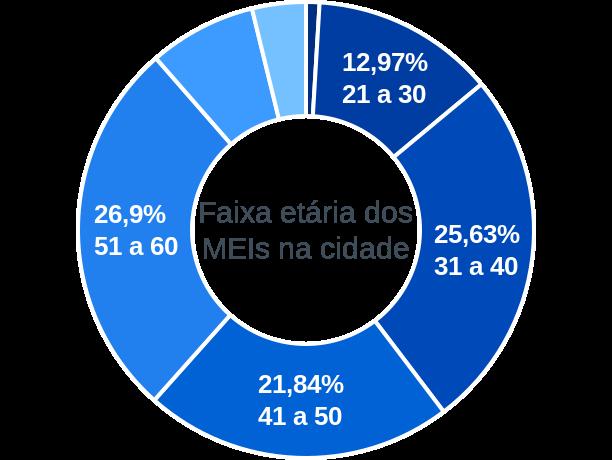 Faixa etária de MEIs na cidade de Formigueiro