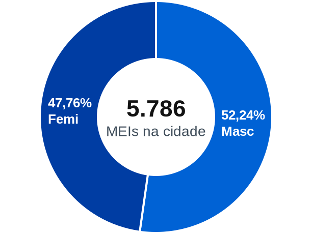 Gênero de MEIs na cidade de Guaíba
