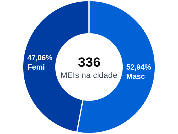 Gênero de MEIs na cidade de Marcelino Ramos