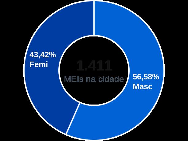 Gênero de MEIs na cidade de Nova Petrópolis