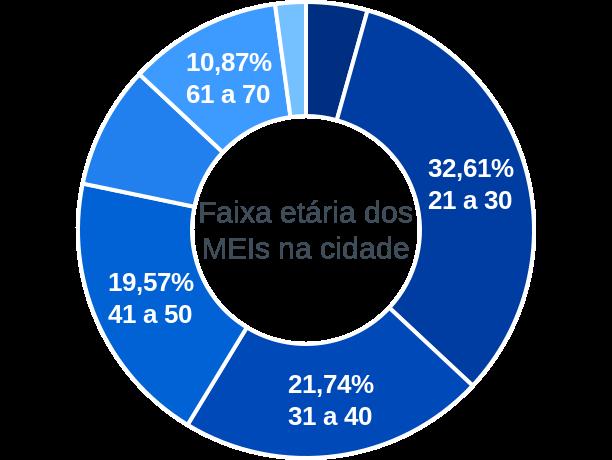 Faixa etária de MEIs na cidade de Ponte Preta
