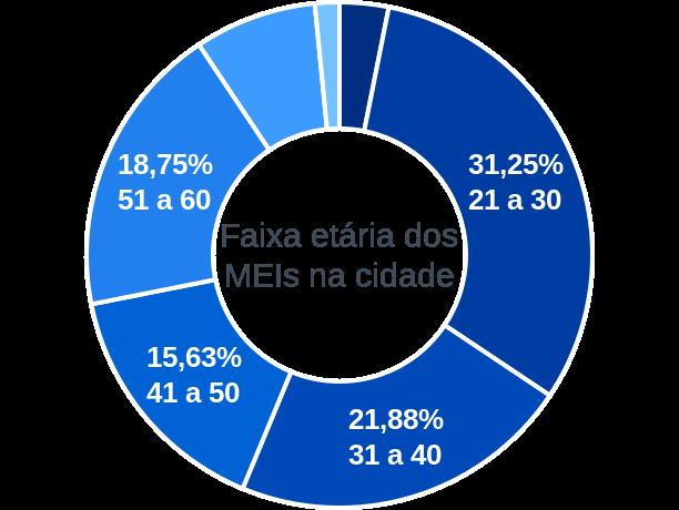 Faixa etária de MEIs na cidade de Santo Antônio do Palma