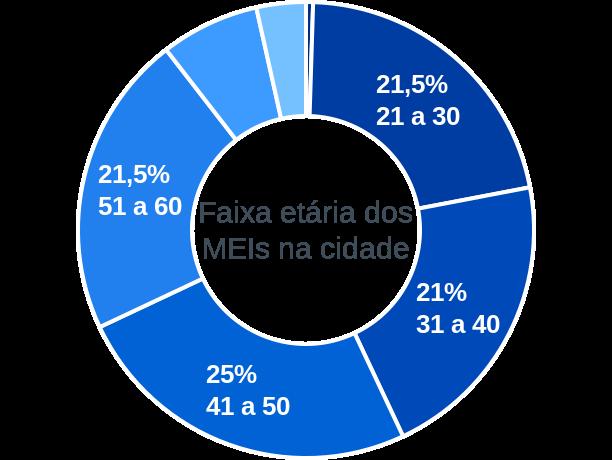 Faixa etária de MEIs na cidade de São José dos Ausentes