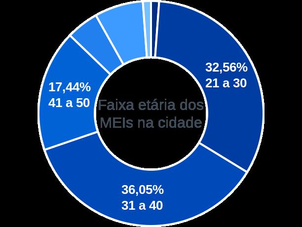 Faixa etária de MEIs na cidade de Senador Salgado Filho