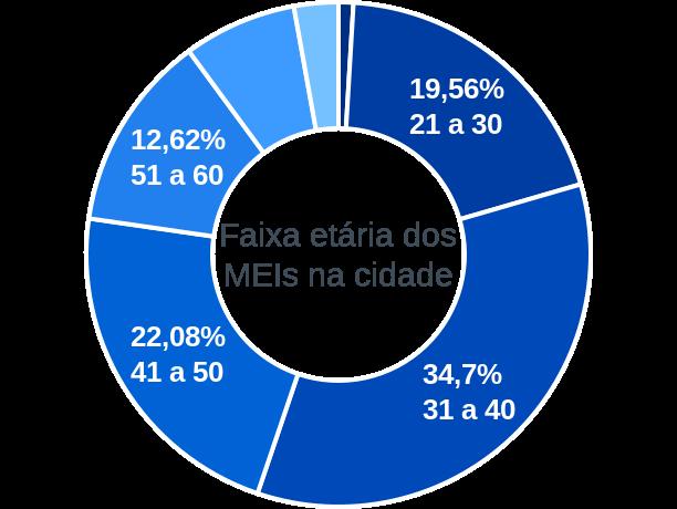 Faixa etária de MEIs na cidade de Sertão Santana
