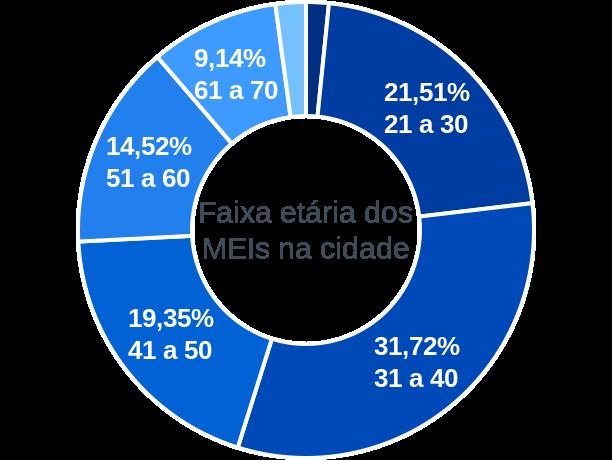 Faixa etária de MEIs na cidade de Três Palmeiras