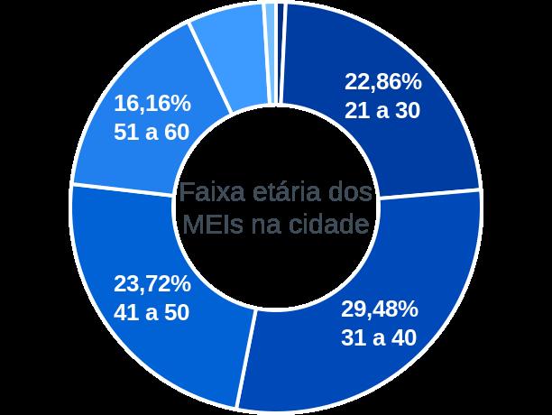 Faixa etária de MEIs na cidade de Viamão