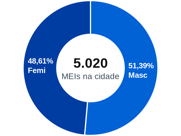 Gênero de MEIs na cidade de Araranguá