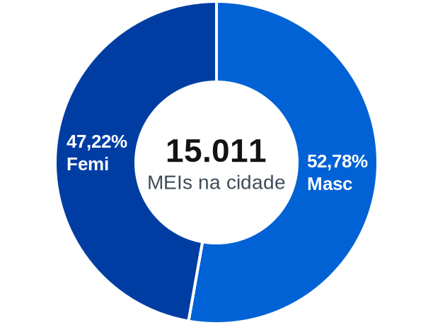 Gênero de MEIs na cidade de Balneário Camboriú