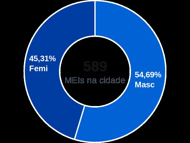 Gênero de MEIs na cidade de Canelinha