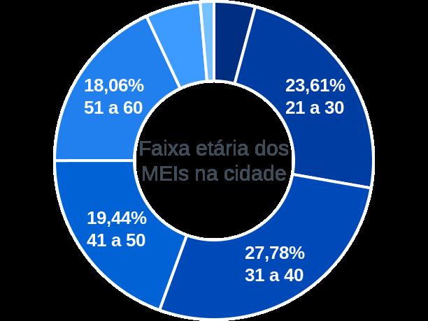 Faixa etária de MEIs na cidade de Frei Rogério