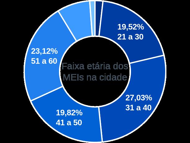 Faixa etária de MEIs na cidade de Guarujá do Sul