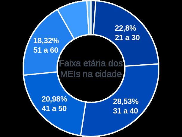Faixa etária de MEIs na cidade de Ponte Serrada