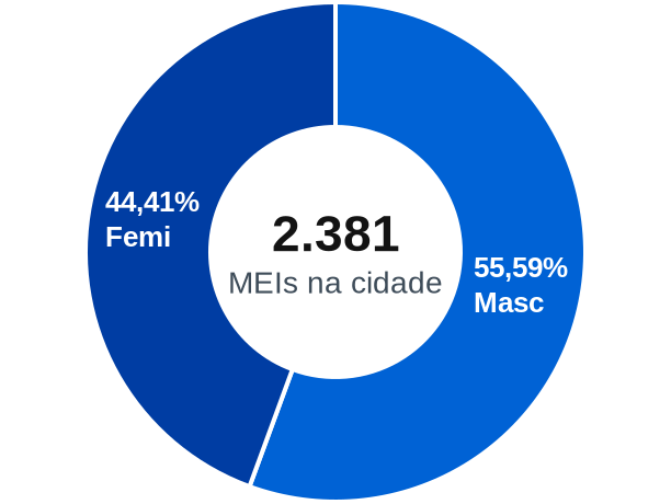 Gênero de MEIs na cidade de Porto Belo