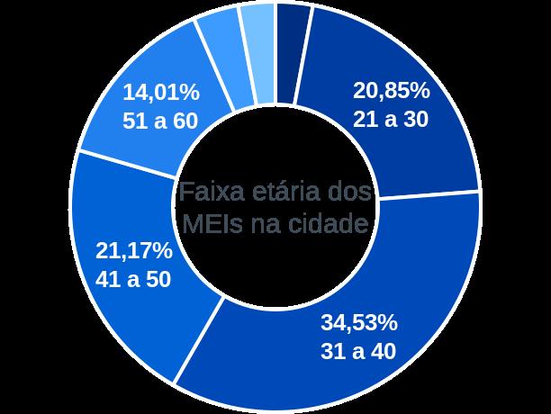 Faixa etária de MEIs na cidade de Rio do Campo