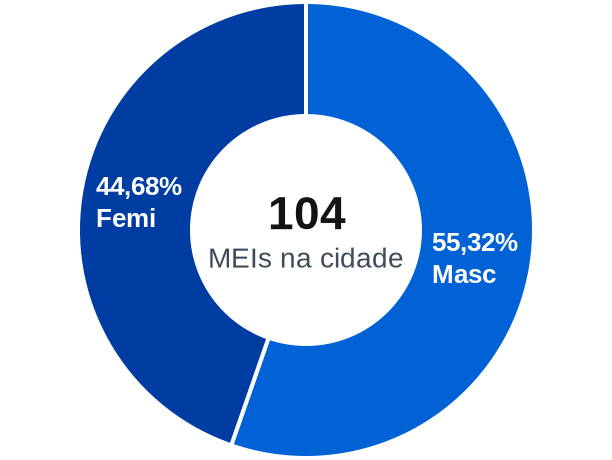 Gênero de MEIs na cidade de São Bonifácio