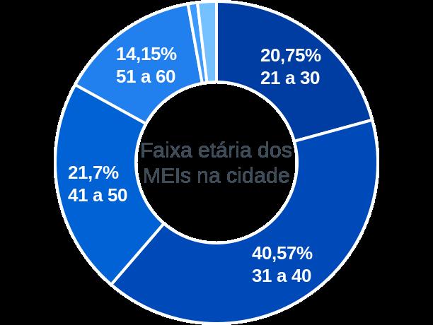 Faixa etária de MEIs na cidade de São Bonifácio