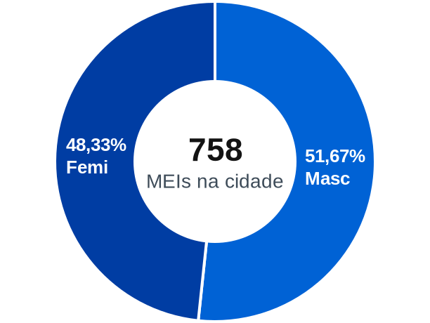 Gênero de MEIs na cidade de São Ludgero