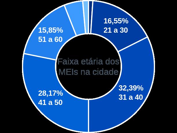 Faixa etária de MEIs na cidade de São Pedro de Alcântara