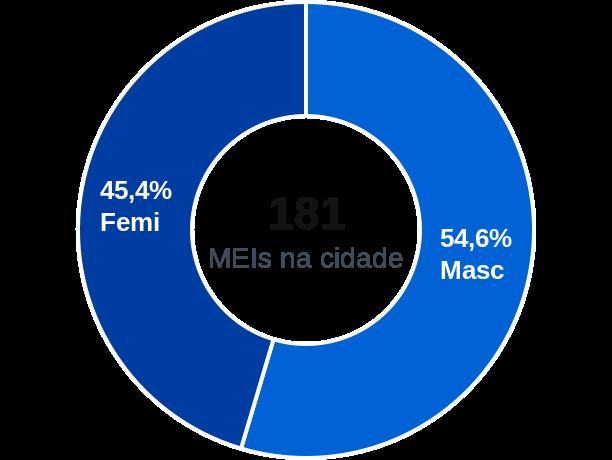 Gênero de MEIs na cidade de Vitor Meireles