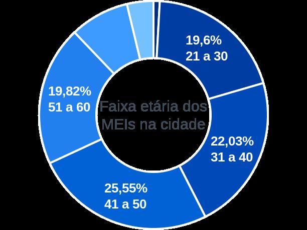 Faixa etária de MEIs na cidade de Águas de São Pedro
