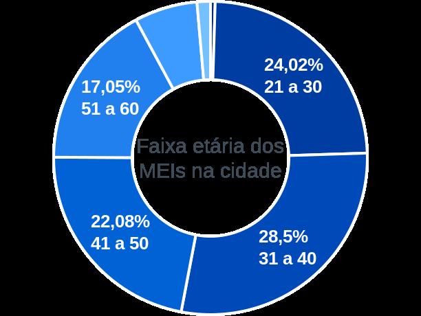 Faixa etária de MEIs na cidade de Álvares Machado