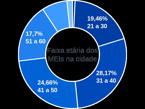 Faixa etária de MEIs na cidade de Araçatuba