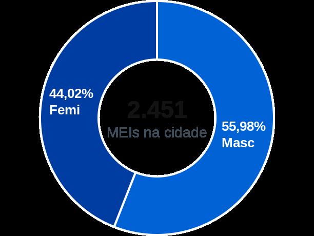 Gênero de MEIs na cidade de Araçoiaba da Serra