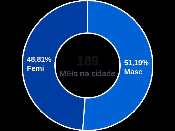 Gênero de MEIs na cidade de Bom Sucesso de Itararé