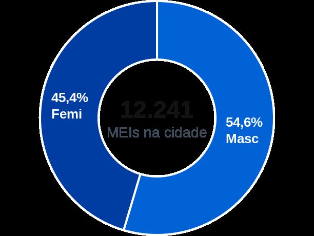 Gênero de MEIs na cidade de Bragança Paulista