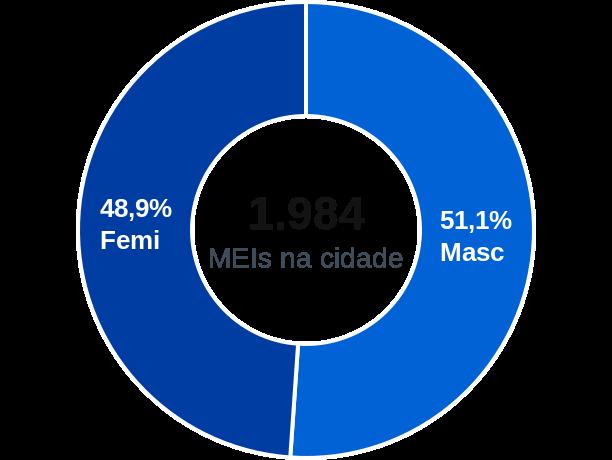Gênero de MEIs na cidade de Cachoeira Paulista