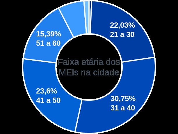 Faixa etária de MEIs na cidade de Campinas