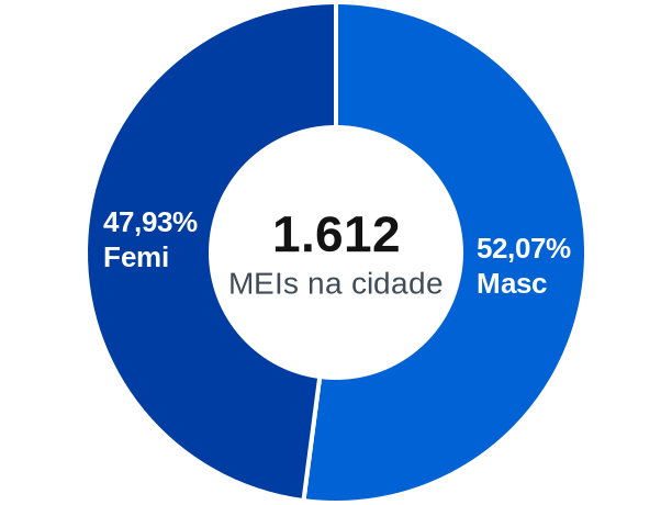 Gênero de MEIs na cidade de Cândido Mota