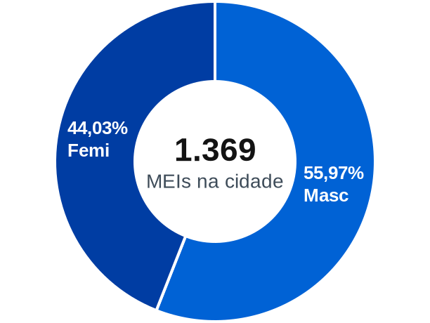 Gênero de MEIs na cidade de Cunha