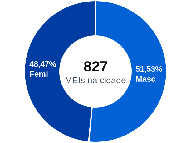 Gênero de MEIs na cidade de Elias Fausto