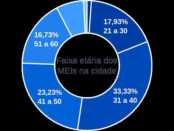 Faixa etária de MEIs na cidade de Elias Fausto