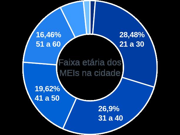 Faixa etária de MEIs na cidade de Euclides da Cunha Paulista